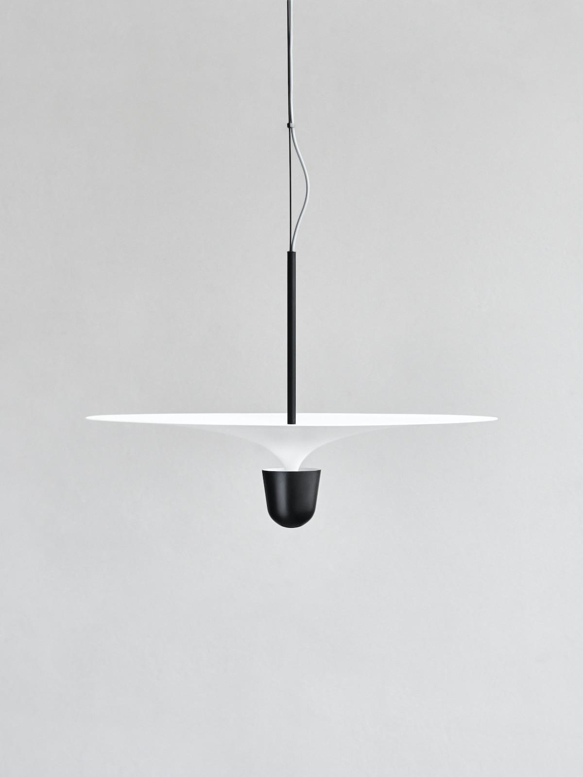 Kantarell-by-Falke-Svatun-6